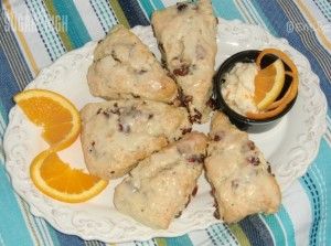 Cranberry Orange Scones 10w