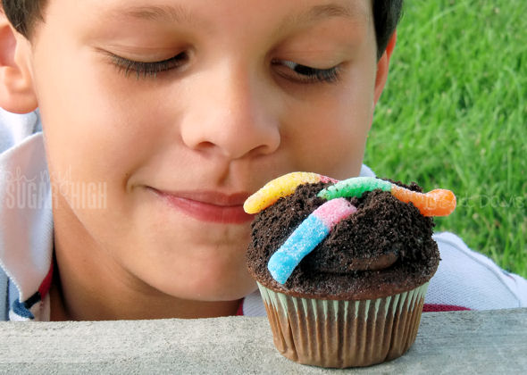 boy and worms dirt cupcake