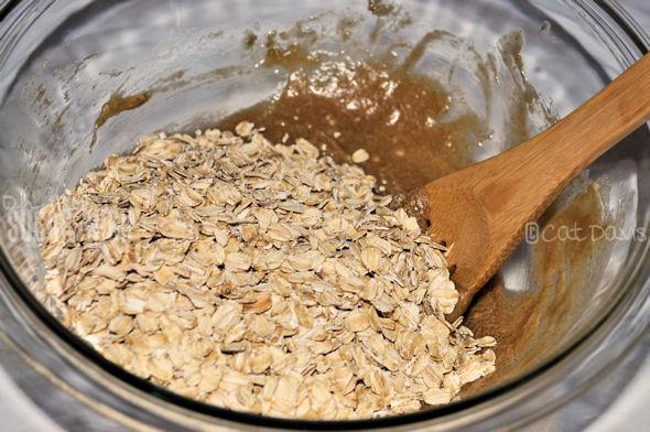oatmeal cookie oats