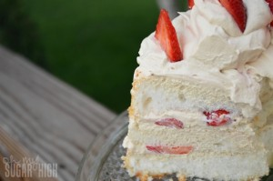 Strawberry Mocha Delight 2