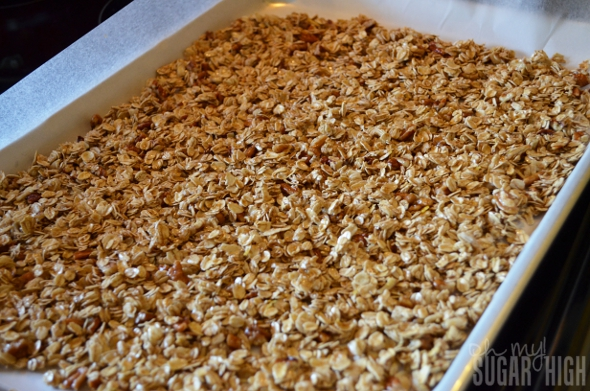 Homemade Berry Pecan Granola 3