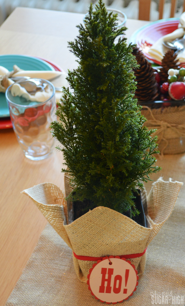 Proflowers Christmas Cypress Tree Live Burlap Centerpiece