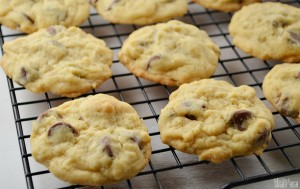 Chewy Chocolate Chip Coconut Cookies