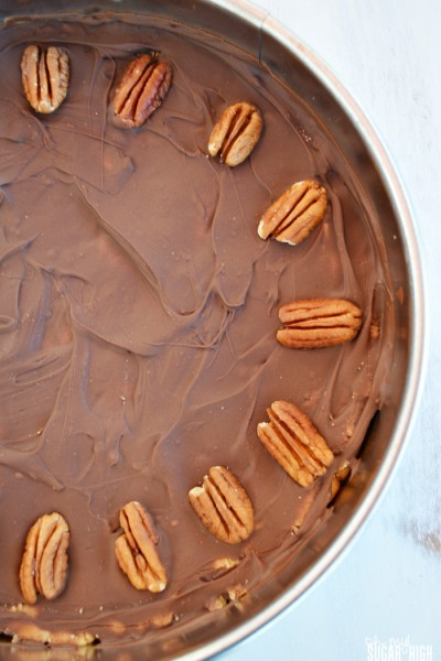 Peanut Butter and Chocolate Cookie Pie